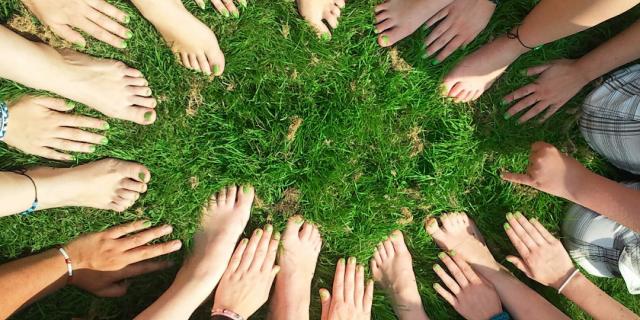 DKV se suma a proteger la naturaleza para salir de la pandemia