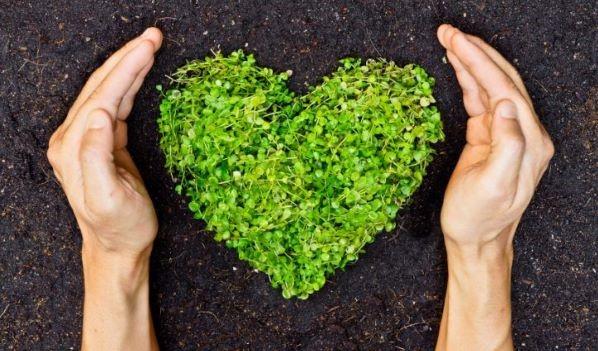 Los aspectos sociales ganan cada vez más terreno en la inversión sostenible