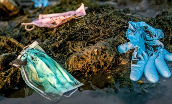 Lo que la pandemia nos dejó: aumento de la contaminación por mascarillas, guantes y otros plásticos de un solo uso - Diario Responsable