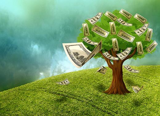 ISR: el medio ambiente es el primer criterio valorado por los inversores particulares