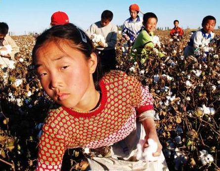 RSE.  El Banco Central noruego perseguirá el trabajo infantil enDuPont,  Monsanto, Bayer y Syngenta